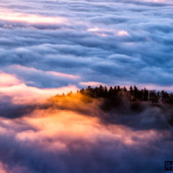 Passwang Nebelmeer