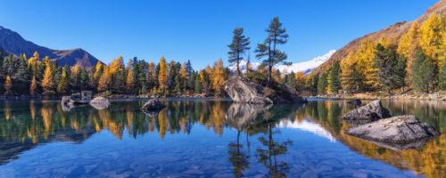 Goldener Herbst im Puschlav