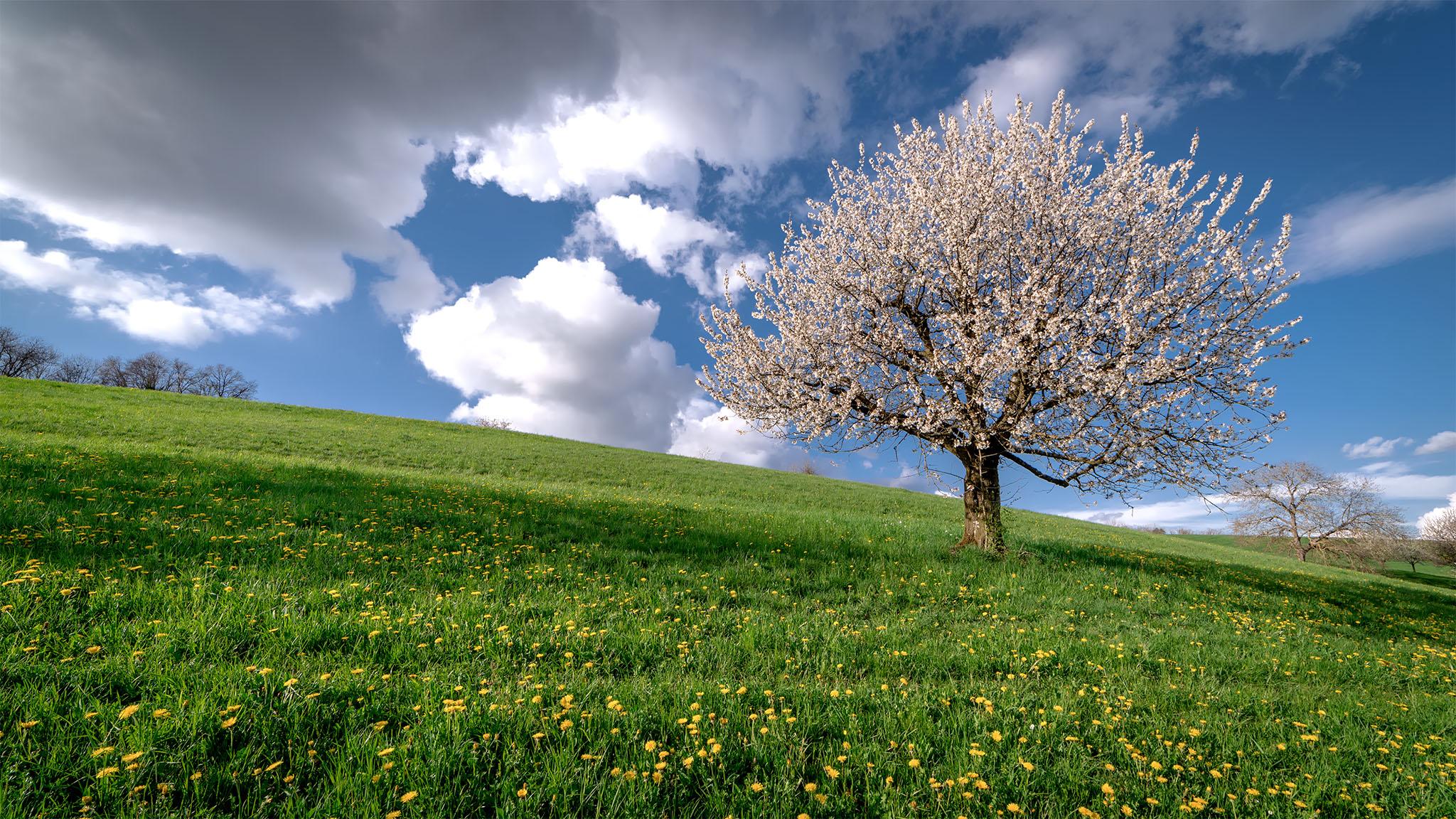 Portfolio_Natur_Bild_04