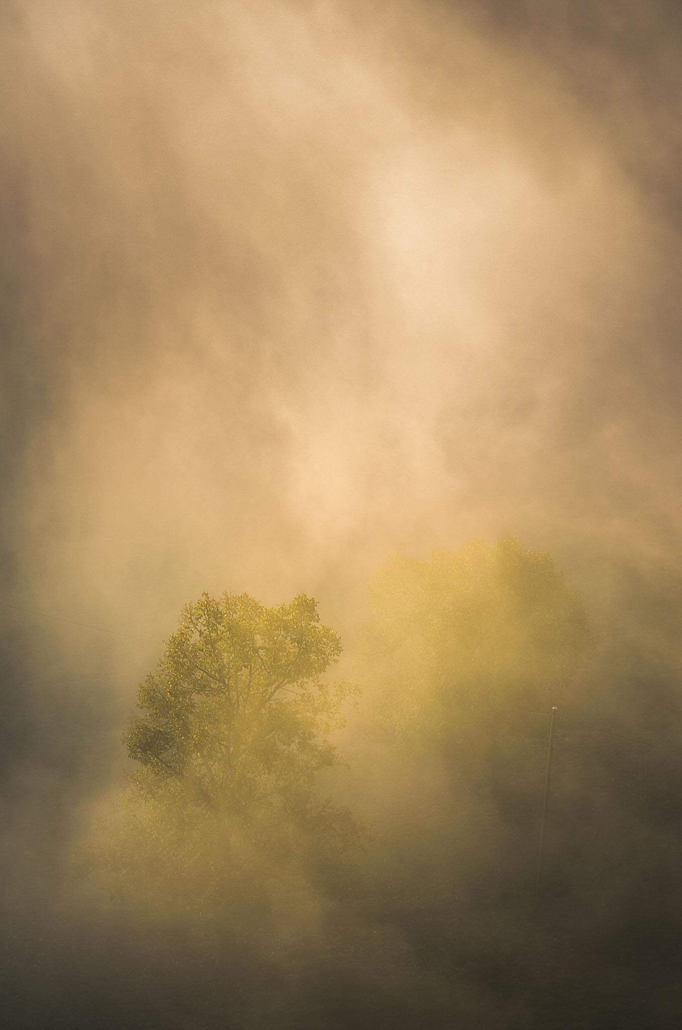 Portfolio_Natur_Bild_15