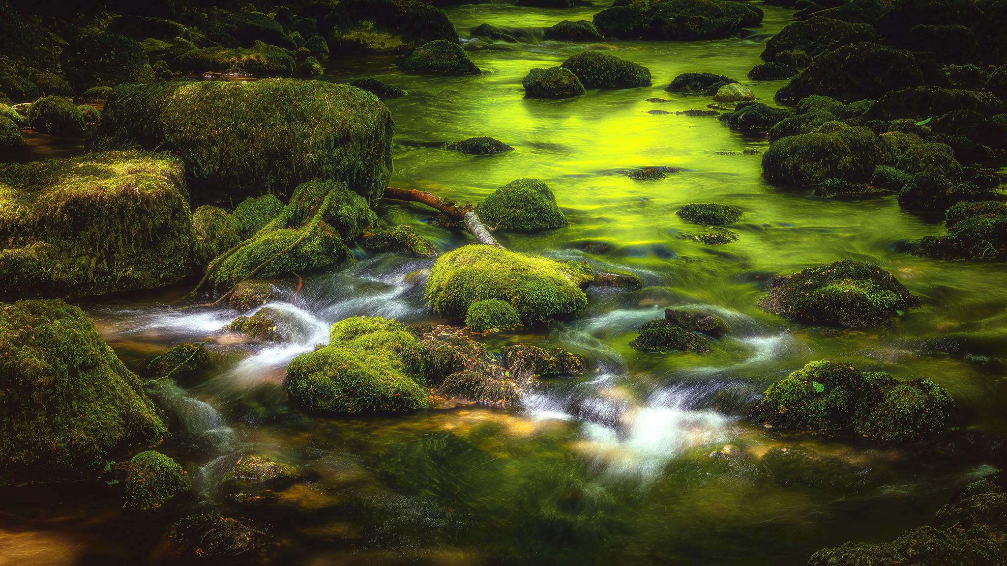 Portfolio_Natur_Bild_20